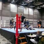 香川県善通寺市でPCゲーム アダルトDVDの買取 格闘技観戦