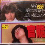 香川県で昭和の古いアダルト写真集 エロ本を買取